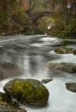 River Braan_SM38456.jpg