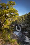 Rogie  Falls_EL32493.jpg