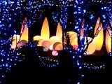 Winter Lite Garden