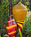 Glassworks at Denver Botanic Gardens
