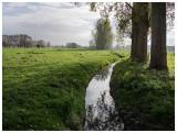 de Stambeek