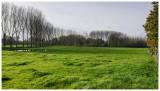 Natuurreservaat Mandelhoek
