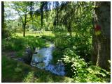 Ruisseau d'Arlune