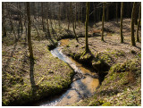 Ruisseau de Wachet