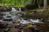Eric's Falls
