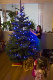 Tree decoration!!!