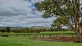 From saltbush to vineyards 4/4