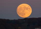 Moon23c-6362-1.jpg