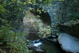 Along the Wissahickon Creek
