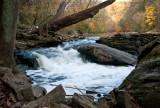 Autumn water flowing