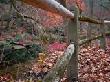Creekside along the path