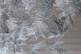 Window Frost 14.jpg