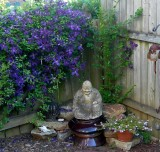 budda & blooming clematis