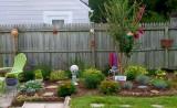 garden - late july