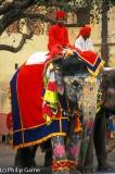 Gangaur festival procession, Jaipur