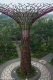 GardensbyBay-10.jpg