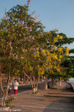 Mekong journey: Kratie, Cambodia