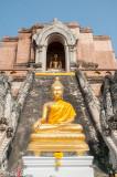 Gilded Buddha effigies at Wat Chedi Luang