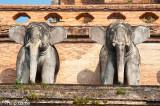 Detail of Wat Chedi Luang, Chiang Mai