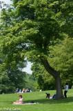 Picnicking near Kenwood House
