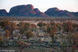 Dawn at Kata Tjuta (the Olgas)