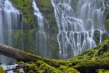 Two Trips: Oregon & Colorado