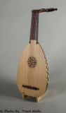 Front view of 16th Century LUTE of ILLUSIONS.