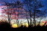 Sunrise at  the Black Locust dsc_0006yvpb
