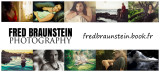 FRED BRAUNSTEIN photography