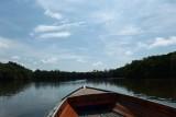 Brunei River - heading upriver in search of proboscis monkeys
