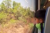 Contemplative passenger