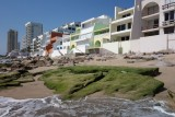 Playa Pato Blanco Beachside Houses