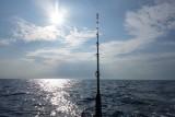 Fishing for Mahi Mahi