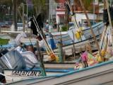 Malecon Fishing Boats
