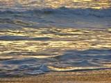 Gold Surf