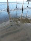 Stone Island Beach Reflection