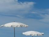 Mayan Palace Umbrellas