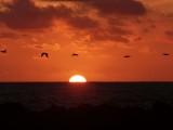 Playa Bruja Sunset