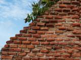 Playa Sábalo Brick Wall