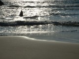 Playa Sábalo Beach Sunset