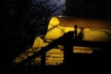 MUNI Bus Stop