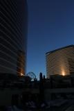 Encore Evening Sun