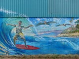 Cardiff-by-the-Sea Surfer