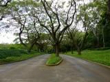 Shoreline Access Road to Kauai Marriott Resort