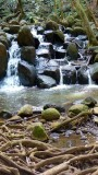Small Waterfall along the Uluwehi Falls Trail