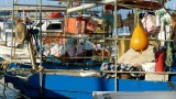 Bodrum Fishing Boats