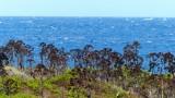 Tiny Island Near Symi
