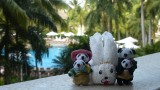 The Pandafords with their bunny friend at Buganvilias Resort