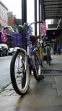 Festive Bike