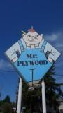Mr. Plywood